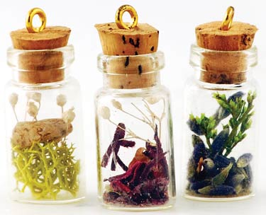Siofra's Enchanted Forest Fairy Tree Mini Terrarium