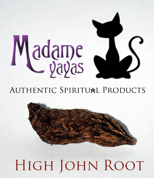 High John the Conqueror Root